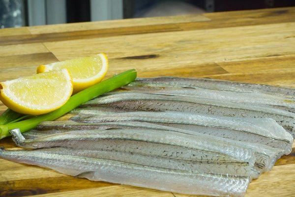 fishp-image1